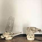 Mascotte « Tête d'Aigle et Libellule »